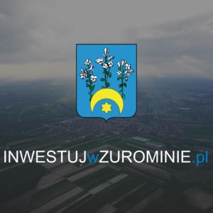 Grafika Inwestujwzurominie.pl